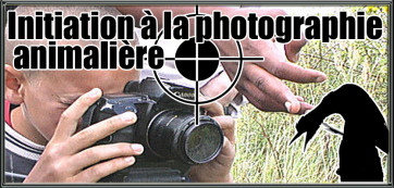 initiation photographie