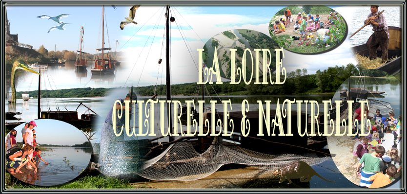 la loire culturelle et naturelle
