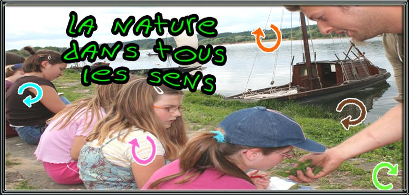 la nature dans tout les sens