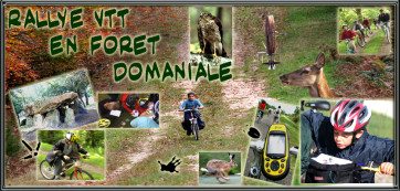 rally VTT enfants en foret domanial